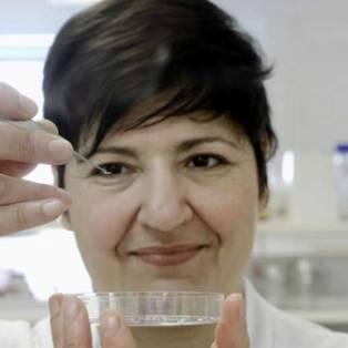 Sonia Contera
